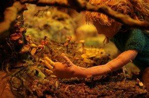Walk Through Forest, Enter Water, Build Fort